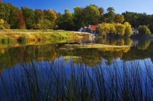 Parcul Natural Lunca Muresului - Hotel Miky